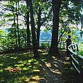 012a Niagara Gorge Trail Series  by Michael Frank Jr