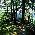 012b Niagara Gorge Trail Series  by Michael Frank Jr