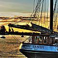 016 Empire Sandy Series by Michael Frank Jr