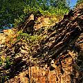 023 Niagara Gorge Trail Series  by Michael Frank Jr