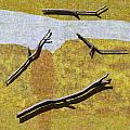 0291 Abstract Landscape by Chowdary V Arikatla