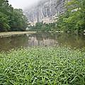0706-0079 Roark Bluff At Steel Creek 1 by Randy Forrester