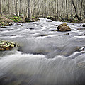0804-0122 Rolling Creek Of The Ozark Mountains by Randy Forrester