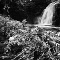 Gleno Or Glenoe Waterfall Beauty Spot County Antrim Northern Ireland by Joe Fox