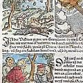1557 Lycosthenes Rain Of Stones Meteorite by Paul D Stewart