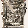 1731 Johann Scheuchzer Creation Of Man by Paul D Stewart