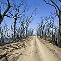 A Dirt Road Runs Along A Mountain Top by Jason Edwards