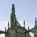 A Forest Of Spires - St Vitus Cathedral Prague by Christine Till