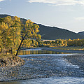 A Scenic View Of The Yellowstone River by Tom Murphy