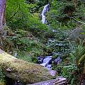 A Small Waterfall by Jeff Swan