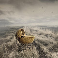 Abandoned Antique Baby Carriage In Field by Sandra Cunningham