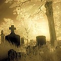 Abandoned And Overgrown Cemetery by Gothicrow Images