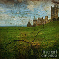 Aberystwyth by Angel Ciesniarska