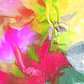 Abstract Garden Impressions by Regina Geoghan
