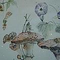 Album Of Crickets by Debbi Saccomanno Chan