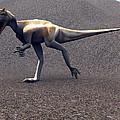 Allosaurus Dinosaur by Christian Darkin