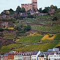 Along The Rhine River by Mike Nellums