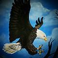 American Bald Eagle by Jennifer Jeffris