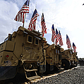 American Flags Are Displayed by Stocktrek Images