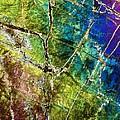 Amphibole Mineral, Light Micrograph by Dirk Wiersma