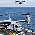An Mv-22 Osprey Tiltrotor Aircraft by Stocktrek Images