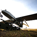 An Rq-7b Shadow Unmanned Aerial Vehicle by Stocktrek Images