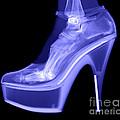 An X-ray Of A Foot In A High Heel Shoe by Ted Kinsman