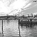 Anchor Inn Cove by Brian Wallace