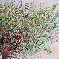 Apple Tree by Christine Lathrop