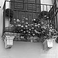 Artisan's Balcony by Gordon Wood