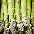 Asparagus by Elena Elisseeva