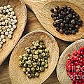 Assorted Peppercorns by Elena Elisseeva