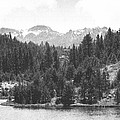 August Snows In The Sierras by Frank Wilson