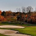 Autumn Golfing  by Andrea Kollo
