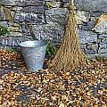 Autumn In The Garden by Joana Kruse