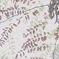 Autumn Meeting by Eena Bo