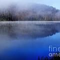 Autumn Morning Mist On Lake by Thomas R Fletcher
