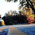 Autumn Road by La Dolce Vita