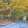 Autumn Road by Tom Singleton