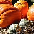 Autumn Study by Lin Grosvenor