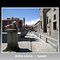 Avila Lions Spain by John Shiron