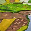 Bac Son Rice Field by Hoang Giang Hai