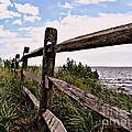 Bayfront Fence by Gladys Steele