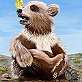 Ben Bear And Butterfly by Phyllis Kaltenbach