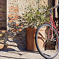 Bicycle by Jeremy Woodhouse
