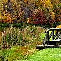 Big Ditch Lake by Thomas R Fletcher