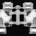 Binoculars X-ray by Ted Kinsman