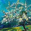 Blooming Appletree by Pol Ledent