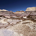 Blue Mesa Landscape by Adam Jewell