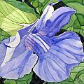 Blue Sky Vine by Debi Singer